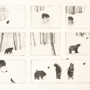 Esther-Connon-Bear-storyboard-main-image