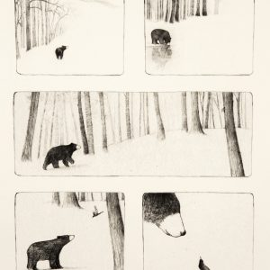 esther-connon-bear-storyboard