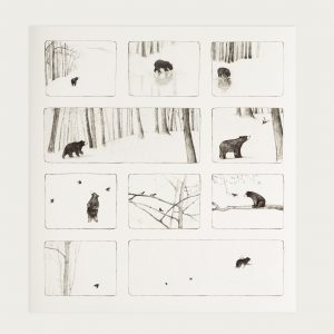 Bear storyboard detail 1