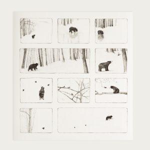 Bear storyboard detail 1